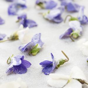 Kandierte Blüten & Blütenkonfit